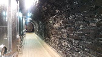 Wandern Sie von Ahrweiler zum historischen Weinkeller mit Weinprobe im Ahrtal