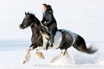 Freeing our mind galloping in the snow.