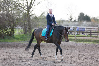 "In the beginning of a riding session it helps ""Cori"" to trot in an extended posture to let go of tension in her body. Afterwards she is able to listen and to connect with the rider."