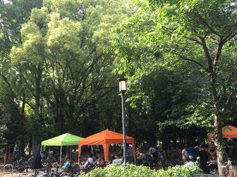 記念樹の森(BBQエリア)