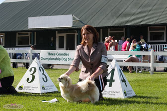 "Dedicated To This is the Time for Malia ""Millie"" with handler Claire 4th BIG Puppy"
