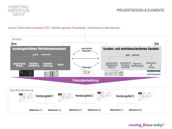 Culture Transformation Evaluation (CTE) und Vertriebskultur - Strategieprojekt, Branche: Technologie
