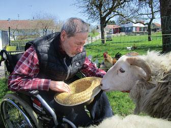 Tiergestützte Arbeit mit Menschen mit Demenzerkrankung. Bauernhoftiere als Therapiewerkzeug.