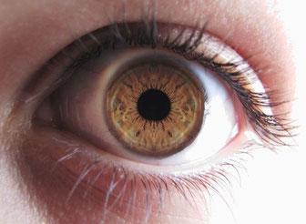 Fotografía Correcta del Iris sin Reflejos