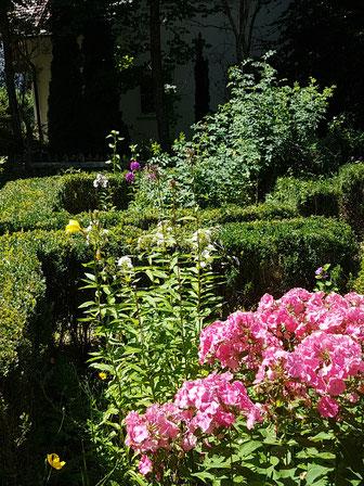 einige Garten-Imoressionen