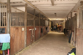 Großer Stall mit 20 Boxen davon 7 mit Paddock