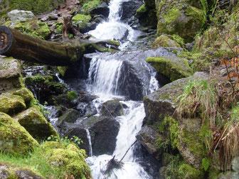Wasserfall in Blauenthal