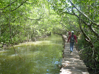 Sihanoukville Ream Nationalpark Day Tour with privat Guide