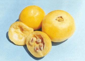 ARAZÀ  frutta  locale