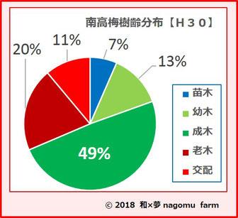 南高梅樹齢分布図【2018】 和×夢 nagomu farm