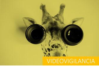 proteccion datos videovigilancia