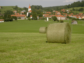Bild: Haldenwang im Allgäu