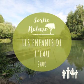 Sortie nature en famille Bréhémont Touraine Val de Loire