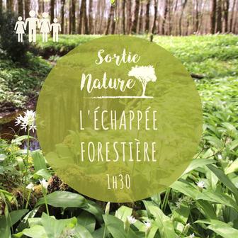Sortie nature en famille Touraine Val de Loire