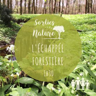 sortie famille nature Touraine