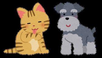 犬や猫のしつけやケア