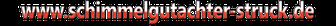 logo sgas