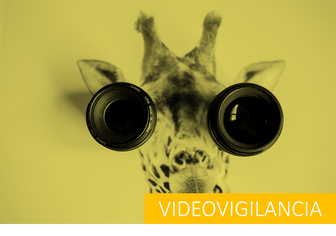 protección de datos videovigilancia