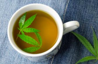 Tee Tasse Hanftee Hanfblätter CBD Bio Hanf Wohlfühlen