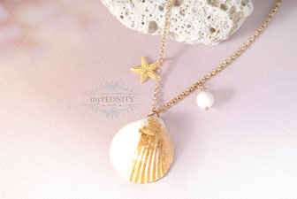 Echte Muschel Blatt vergoldet Seestern Halskette