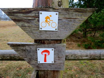 Mecklenburger Seenplatte Rad fahren wandern