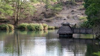 Mzima Springs-Camera di osservazione subacquea