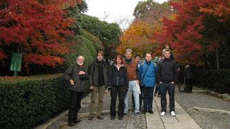 """Herbstlaub und """"Übergangsjacken"""""""