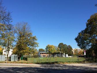 Spielwiese am Ahornring: Hier soll bald die neue Grundschule stehen - Foto: SPD