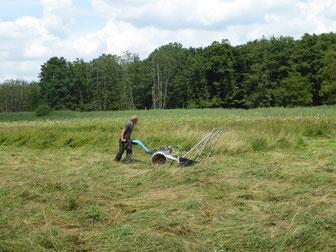 Foto: Ein Großteil der Landschaftspflegemaßnahmen findet in Natura 2000-Gebieten im Landkreis Neumarkt statt, z.B. Pflegemahd im Deusmauer Moor
