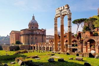 Rome-Roman Forum and Palatine Hill