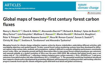 Une étude qui fait le bilan du captage CO2 par les forêts.