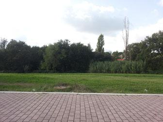 L'area in cui si vorrebbe realizzare il collegamento stradale