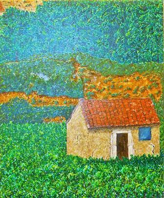 Vigne du Languedoc, huile sur toile, 60 x 50 cm