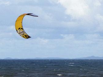 A kite and Moreton Island