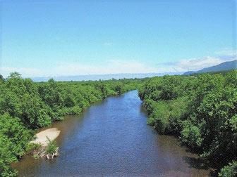 朱太川の写真