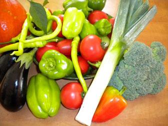 reiche Ernte von unseren Gemüsepflanzen