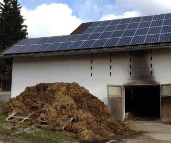 Trocken – Fermente Biogas aus Gülle