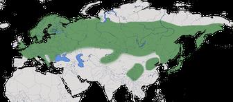 Karte zur weltweiten Verbreitung der Tannenmeise (Periparus ater)