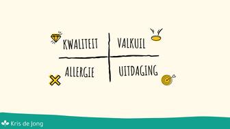 Kernkwadrant: Kwaliteit, valkuil, allergie, uitdaging