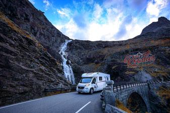 Hund_Trollstiegen_Geiranger_Norwegen_Reisebericht_Die Roadies