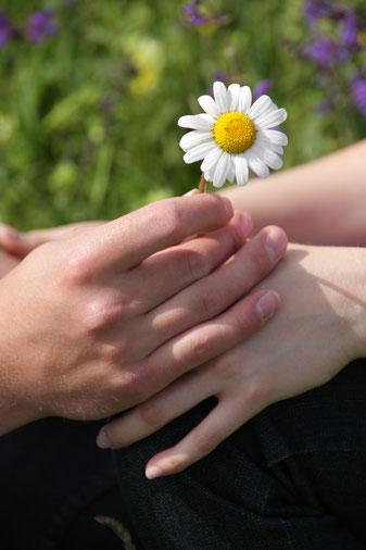 Hände die sich berühren, Sinnlich, Blume, Sanft, Achtsam, Zärtlich, Wheel of Consent, Einvernehmen, Konsens Rad