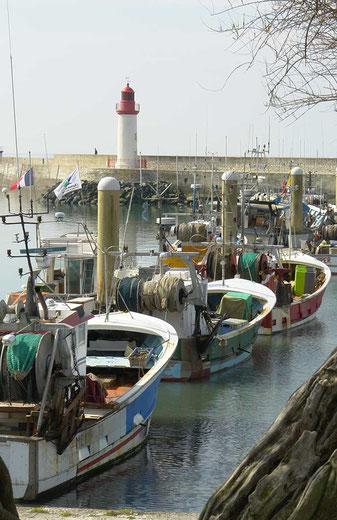 Port de la Cotinière, île d'Oléron.