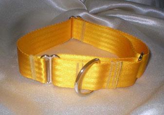 Martingale, Halsband, 4cm, Gurtband sonnengelb