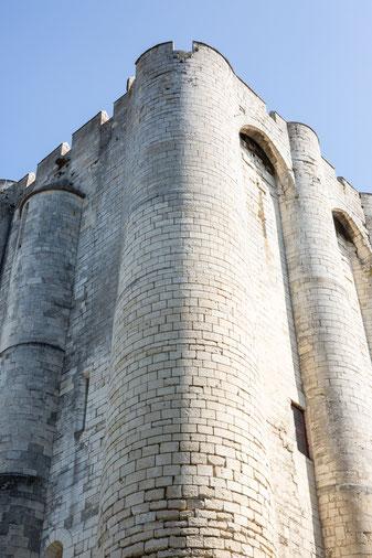 Photo verticale extérieur Donjon Niort en pierre Marais Poitevin Région Nouvelle-Aquitaine France Europe par Marie Deschene - Pakolla