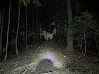 「夜の山」の画像検索結果