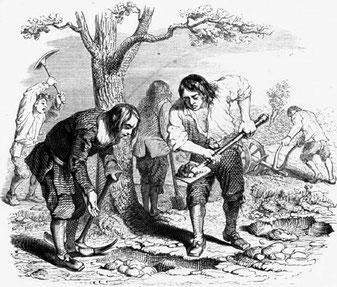 Illustration de la fable Le laboureur et ses enfants