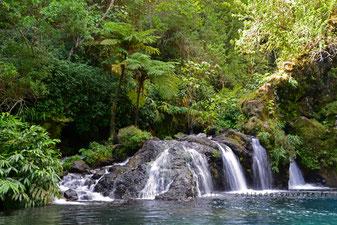 - Cascade du Trou Noir - La Réunion -