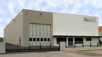 2008 - L'unità produttiva di Carlino