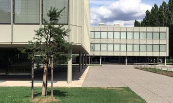 Bild Gebäude M und D (Strandboden) in Biel/Bienne
