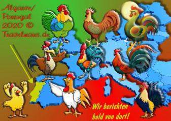 Der Hahn ist das  Symbol Portugals und steht für Gerechtigkeit , Stolz und Glück.